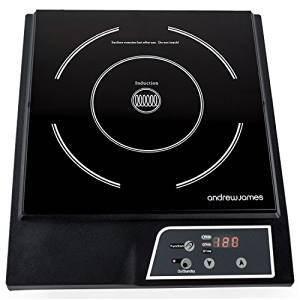BERTELIN électrique Plaque à Induction Portable Tactile Numérique Unique Cuisinière Plaque Chauffante